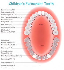 Child Dentist in Delhi